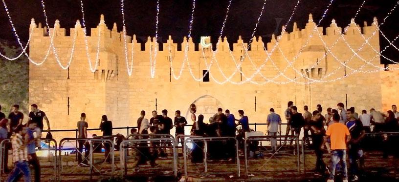 Derrière les fronts : résistances et résiliences en Palestine